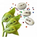 ShoppersCave 3 Pcs Express Plant Magic Seed Message Bean For Valentine Special Gift